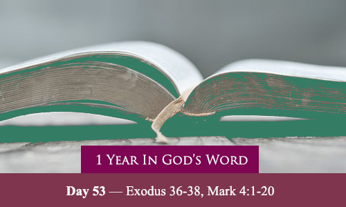 year-in-Gods-Word-day-53