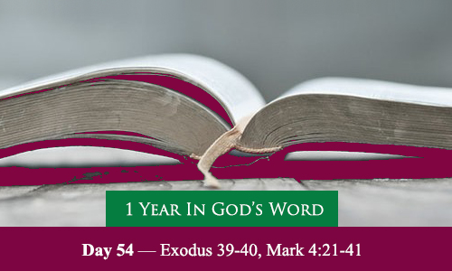 year-in-Gods-Word-day-54