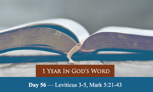 year-in-Gods-Word-day-56