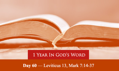 year-in-Gods-Word-day-60