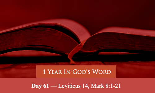 year-in-Gods-Word-day-61