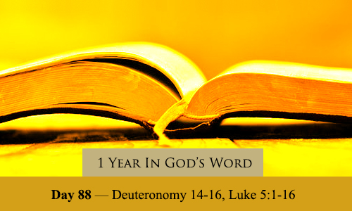 year-in-Gods-Word-day-88