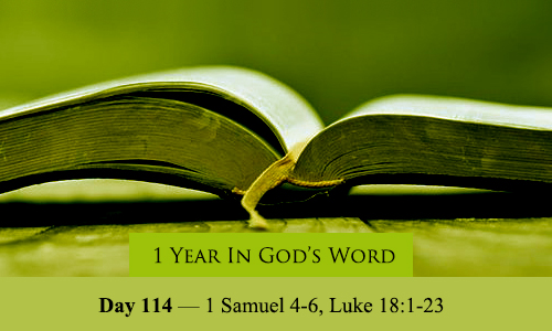 year-in-Gods-Word-day-114
