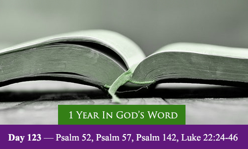 year-in-Gods-Word-day-123