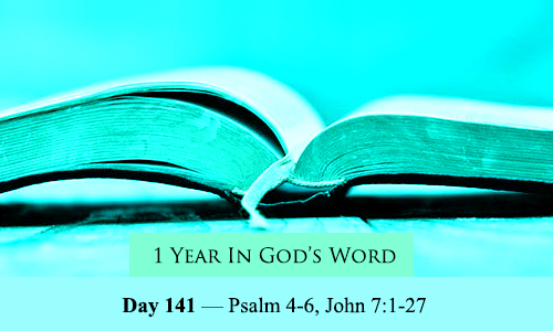 year-in-Gods-Word-day-141