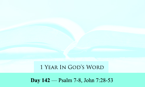 year-in-Gods-Word-day-142