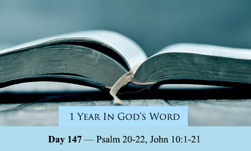 year-in-Gods-Word-day-147