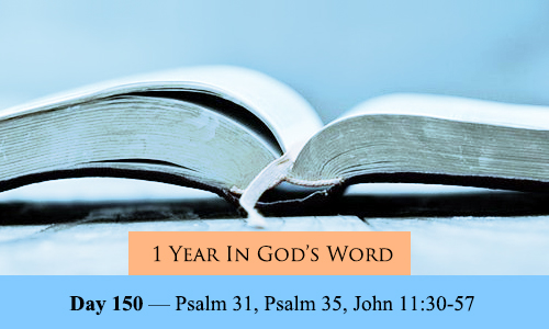 year-in-Gods-Word-day-150