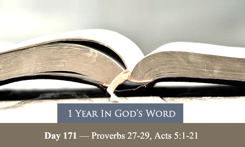 year-in-Gods-Word-day-171