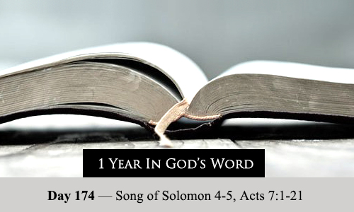 year-in-Gods-Word-day-174