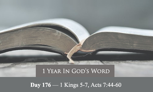 year-in-Gods-Word-day-176