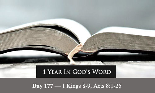 year-in-Gods-Word-day-177
