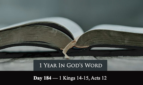 year-in-Gods-Word-day-184