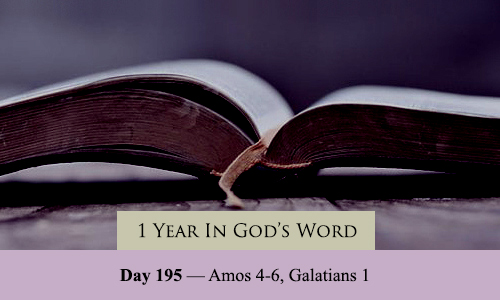 year-in-Gods-Word-day-195
