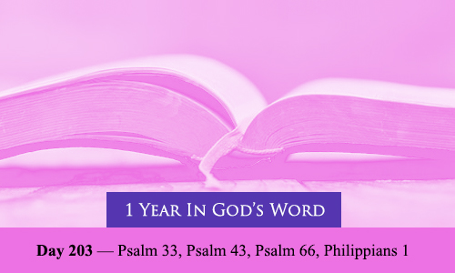 year-in-Gods-Word-day-203