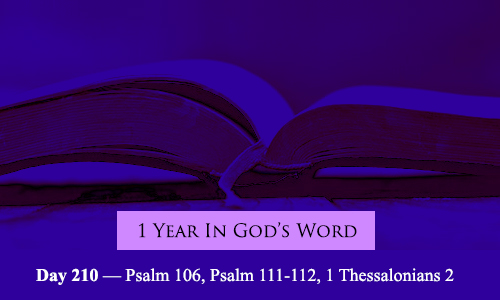 year-in-Gods-Word-day-210