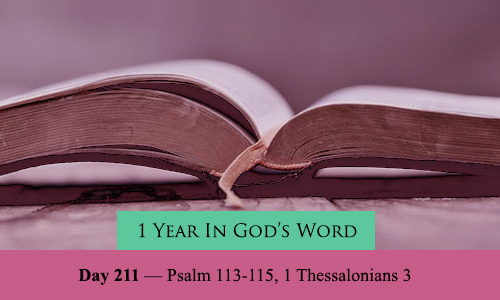 year-in-Gods-Word-day-211