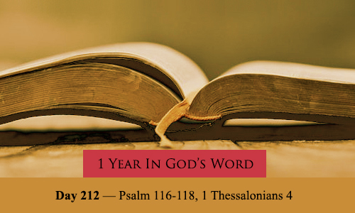 year-in-Gods-Word-day-212