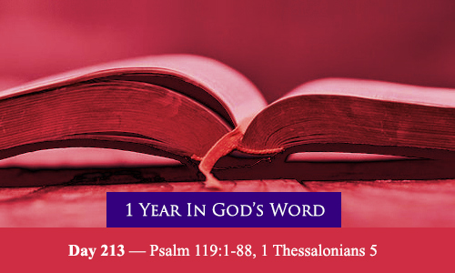 year-in-Gods-Word-day-213