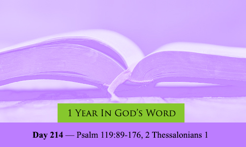 year-in-Gods-Word-day-214