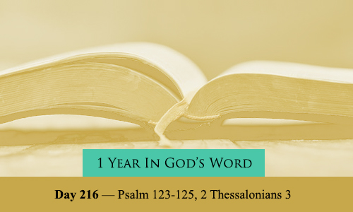 year-in-Gods-Word-day-216
