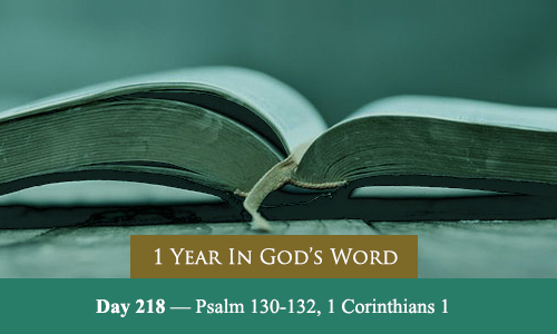 year-in-Gods-Word-day-218