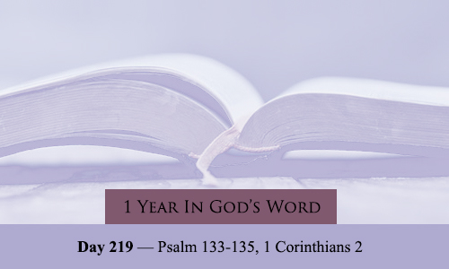 year-in-Gods-Word-day-219