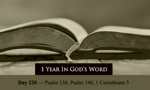 year-in-Gods-Word-day-220