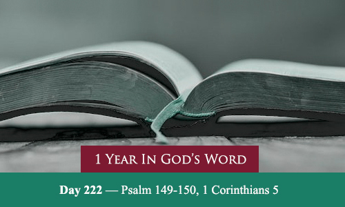 year-in-Gods-Word-day-222