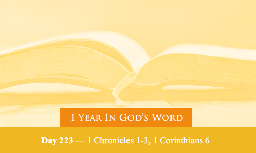 year-in-Gods-Word-day-223