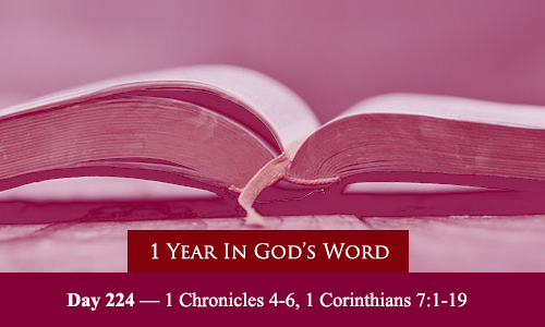 year-in-Gods-Word-day-224