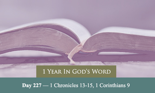 year-in-Gods-Word-day-227