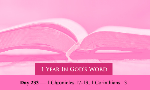 year-in-Gods-Word-day-233