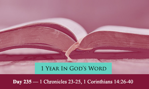 year-in-Gods-Word-day-235