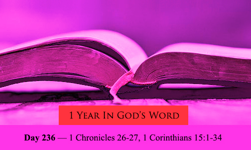 year-in-Gods-Word-day-236