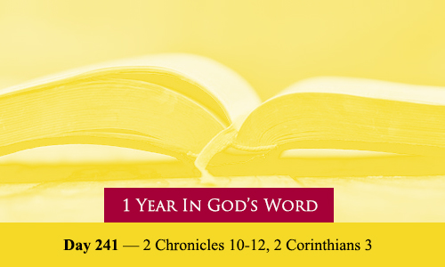 year-in-Gods-Word-day-241