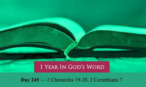year-in-Gods-Word-day-245