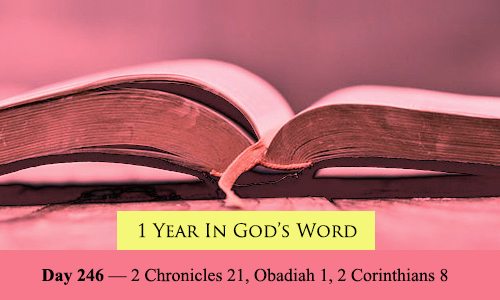 year-in-Gods-Word-day-246