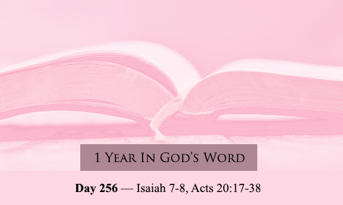 year-in-Gods-Word-day-256