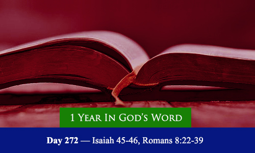 year-in-Gods-Word-day-272