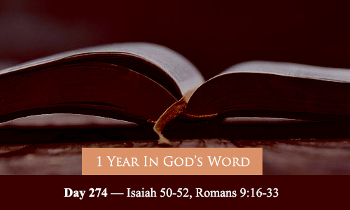 year-in-Gods-Word-day-274