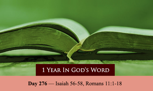year-in-Gods-Word-day-276