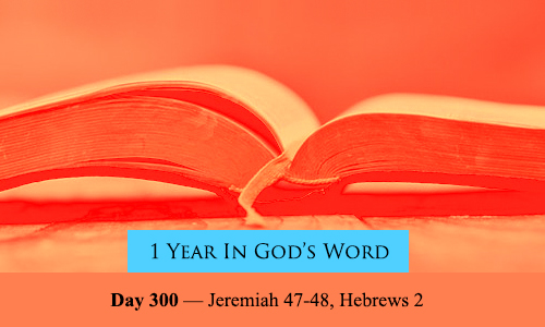 year-in-Gods-Word-day-300