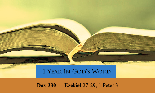 year-in-Gods-Word-day-330