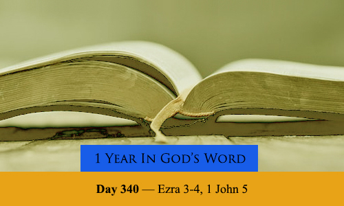 year-in-Gods-Word-day-340