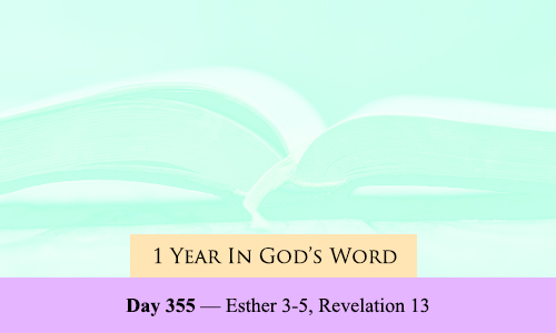 year-in-Gods-Word-day-355