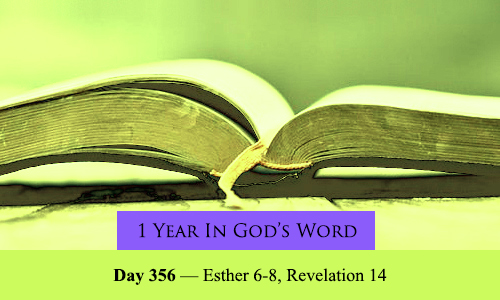 year-in-Gods-Word-day-356