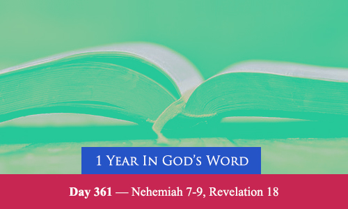 year-in-Gods-Word-day-361
