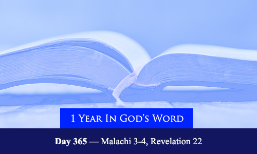 year-in-Gods-Word-day-365