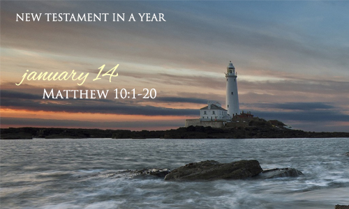 new-testament-in-a-year-january-14